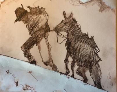 Alpino con il mulo verso la vetta