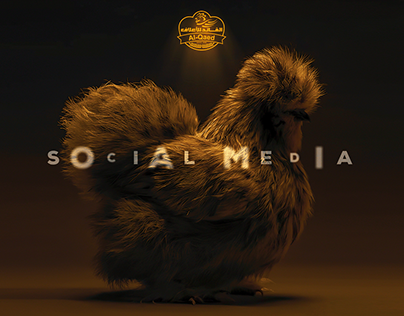 AL-QAED FEED | Social Media