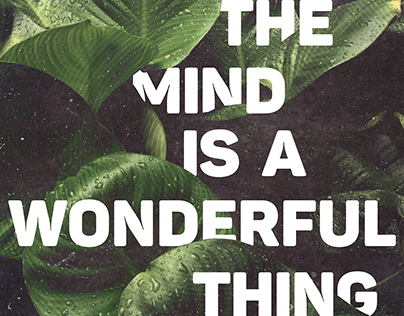 THE MIND IS A WONDERFUL THING