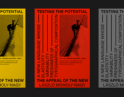 TESTING THE POTENCIAL - POSTER