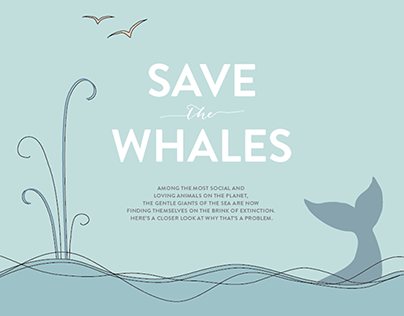 """Save The Animals"" Infographic Series"
