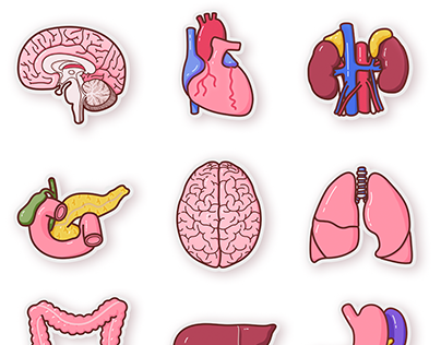 Anatomical Icons for Health Literacy