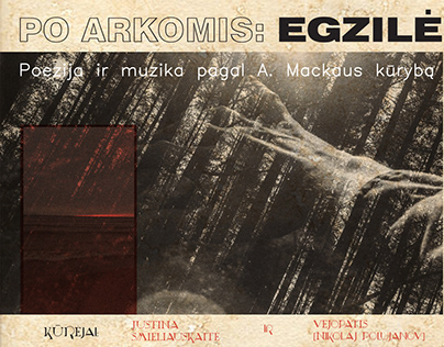 Event visuals. Collab with Paulius Vepštas