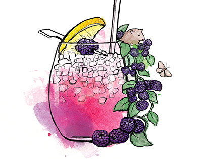 Virgin Atlantic Cocktail illustrations