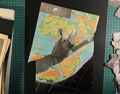 rso196, rhino