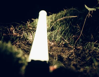 Illuminating the Nature