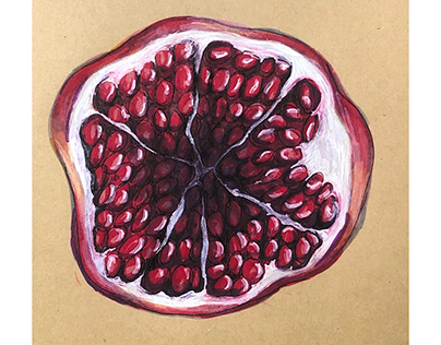 Pomegranate Sketch