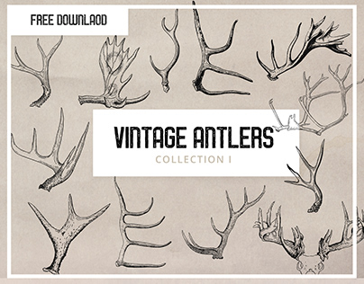 Free - Vintage Antlers Graphics Clipart