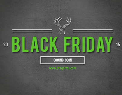 Stag Arms - Black Friday 2015