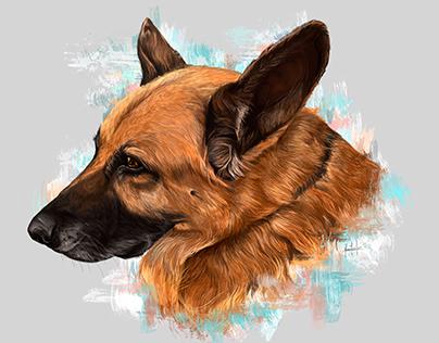 Dog portraits Vol1