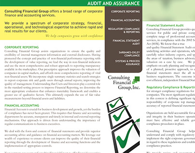 Brochures for Consulting Financial Group | 2013