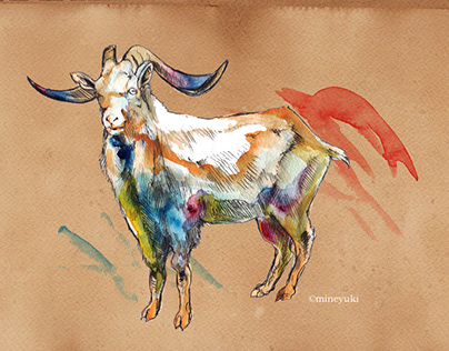 Animals (2012~2013 personal works)