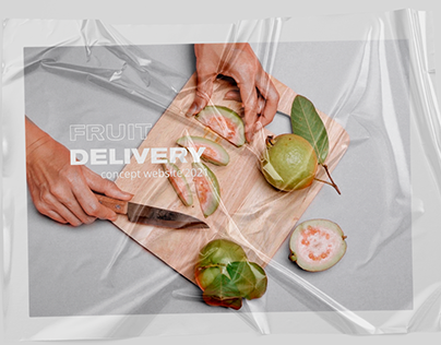 FRUIT DELIVERY website concept