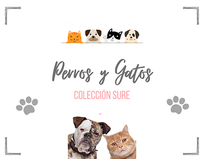 Colección Perros y Gatos 🐾