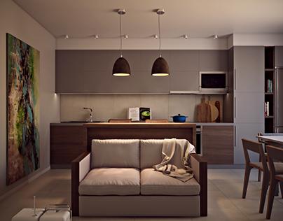 Apartments in Kiev. Studio. Wood with grey