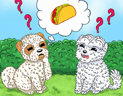 WHERE IS TACO ? (CHILDRENS BOOK COVER)