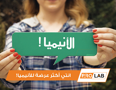 Pro Lab