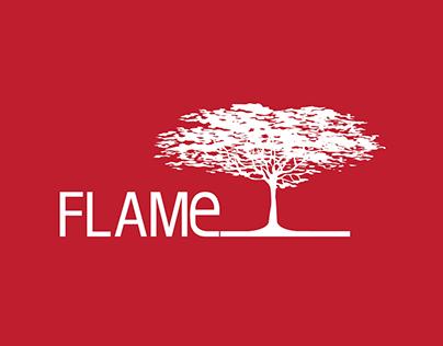 Flame Identity
