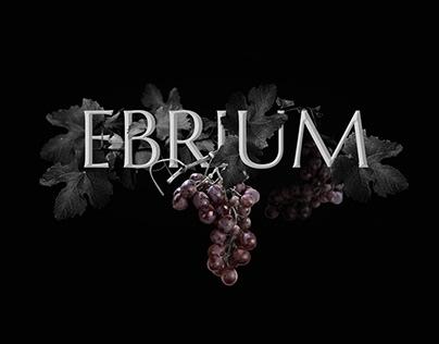 EBRIUM - Wine 2018 (school project)