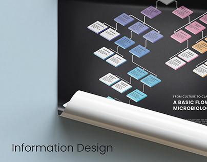 Bacterial Identification: Information Design