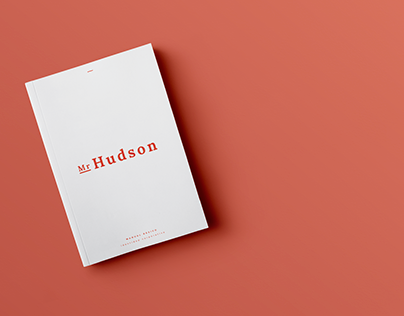 Mr Hudson