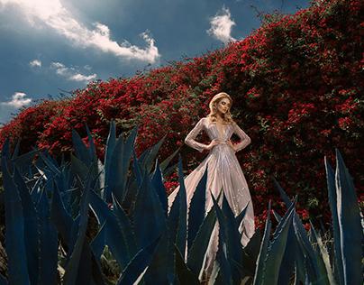 Fashion World Magazine: Desperate Hollywood Wife