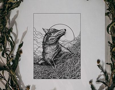 Wild Cozy Fauna - Ink Illustration