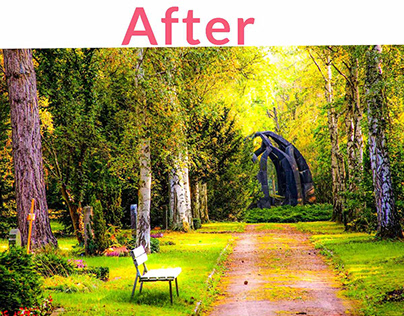 Color correction of a image of nature .
