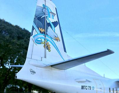 El ultimo vuelo, Fuerzas aéreas Argentinas