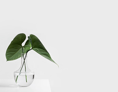 Website design for interior design
