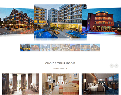 Hotel Booking Theme Customization