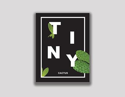 Tiny Cactus Falling Poster