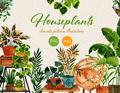 Houseplants. Watercolor set