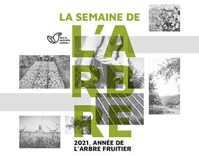 La semaine de l'arbre - Poster & Brochure
