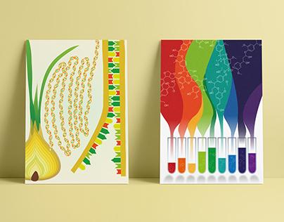 Colours of Science   Kolory Nauki
