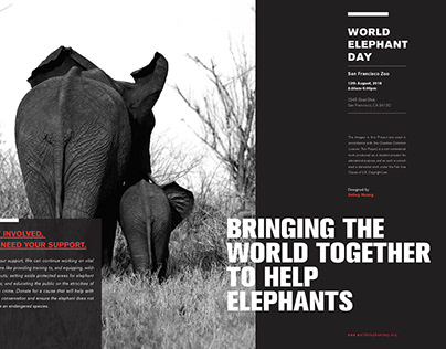 Elephants need your help