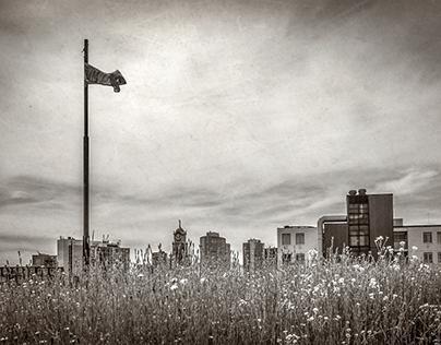 Roof days Rotterdam 2