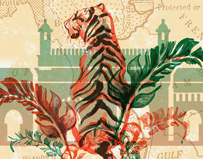 Indian Animals - Illustration