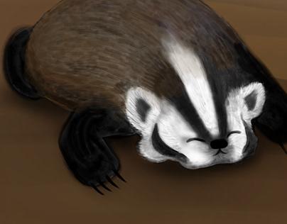 2020-09sep10-badger