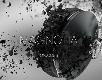 Magnolia: Process