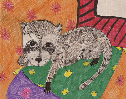 Children's book about racoon