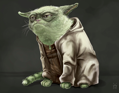 Yoda the Cat