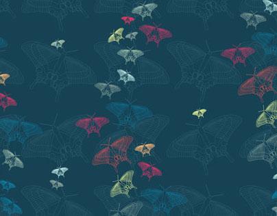 Butterflies | Pattern