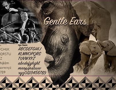 Gentle Ears Benefit Website Presentation