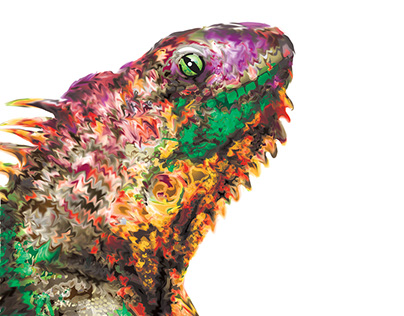 Chameleon illustrated