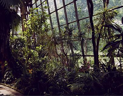 Botanical Garden in Cracow, Poland