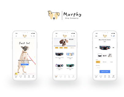 Murphy- A one stop shop for your dog!