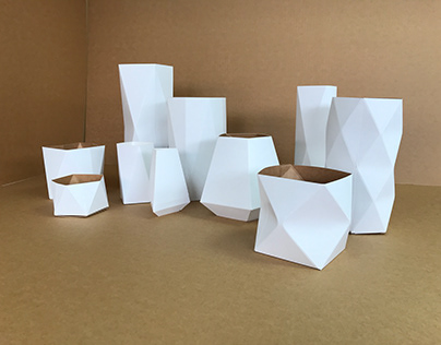 Vases carton