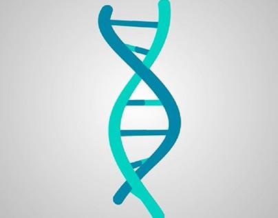 DNA Animation