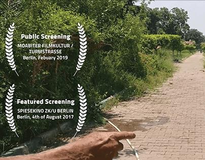 Documentary Film   Provocative Flowers